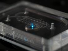 Integrated optics for microfluidics